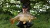 George Gribble   Common   Howells