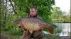 Rob Webb | Fully Scaled Mirror | Howells
