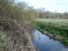 River Blackwater Downstream Pic 1