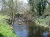 River Blackwater Upstream