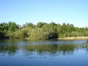 Totham Pit in the spring