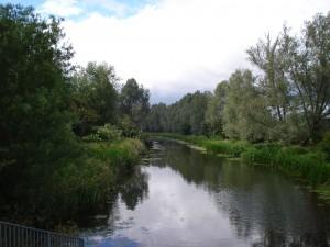 C&B Canal Jun 2