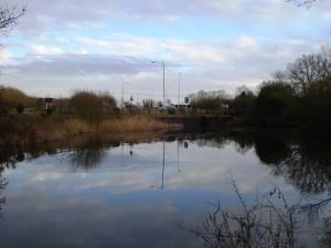 Railway Pond 2