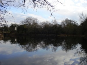 Railway Pond 3