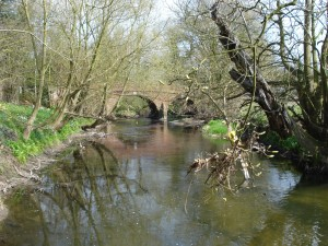 River Blackwater
