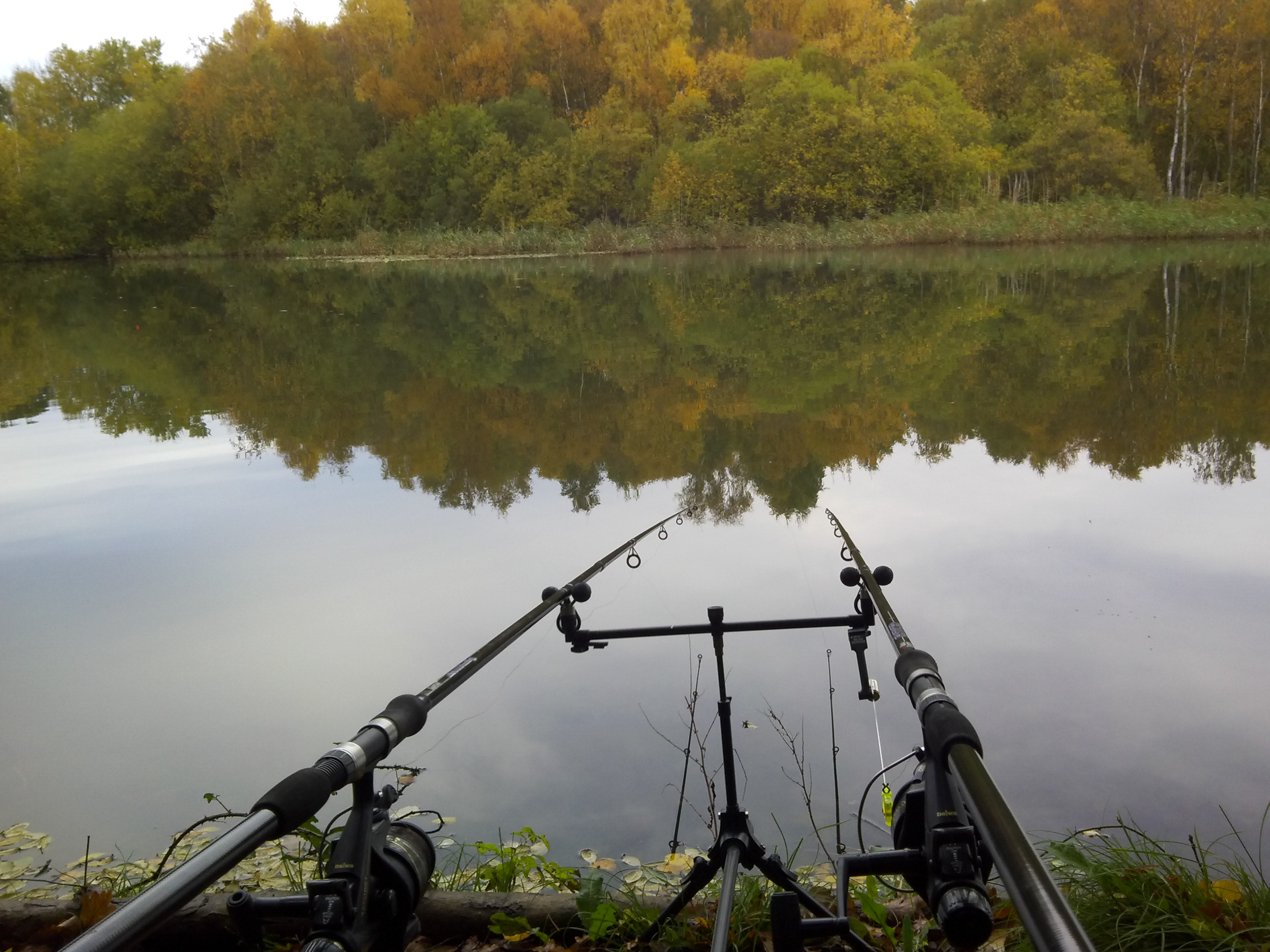 Tothampitstillasmillpoolalancleave - Carp fishing wallpaper hd ...